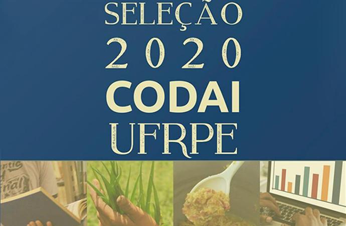 cartaz seleção codai