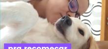 """menina com cachorro escrito """"pra recomeçar"""""""